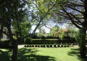 Zona ajardinada de la casa con amplio espacio de hierba