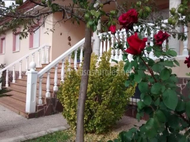 Vistas de la entrada a la casa con rosales