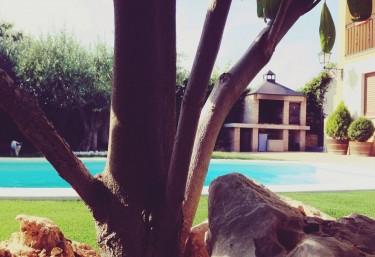 Casas rurales con piscina en olite for Camping en navarra con piscina