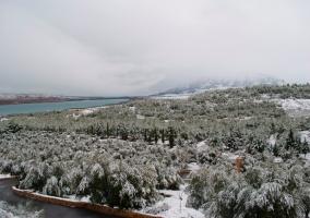 Alrededores nevados