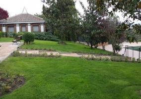 Jardín y árboles