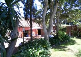 Casa Begonia