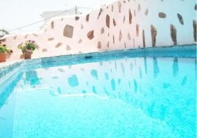 Vistas de la piscina con plantas