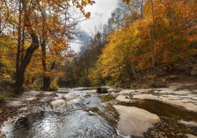 Hoteles con encanto Parque Natural del Montseny
