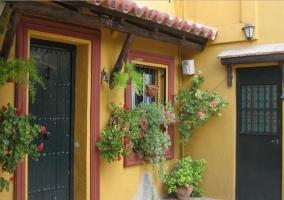 Acceso principal a la casa con plantas decorativas