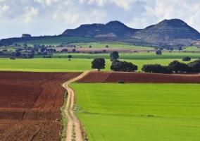 Prados y los campos cercanos a la casa