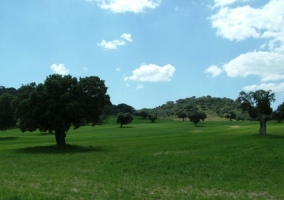 Zona de la pradera de Muñico