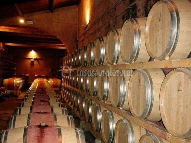 Zona reconocida por sus vinos