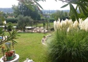 Vistas de la zona de jardines
