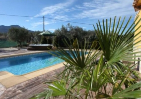 Vistas de las amplias zonas de la piscina