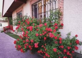 Fachada con flores