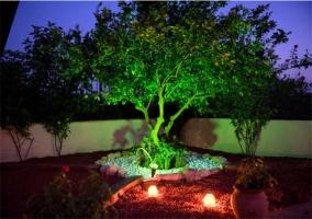 Jardín de la casa rural iluminado por la noche