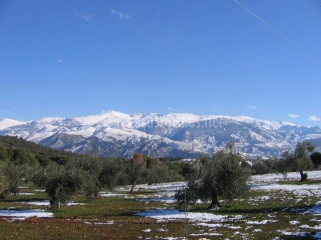 Matrimonio Simbolico Sierra Nevada : Hacienda munitiz cortijo las espeñuelas en polopos granada
