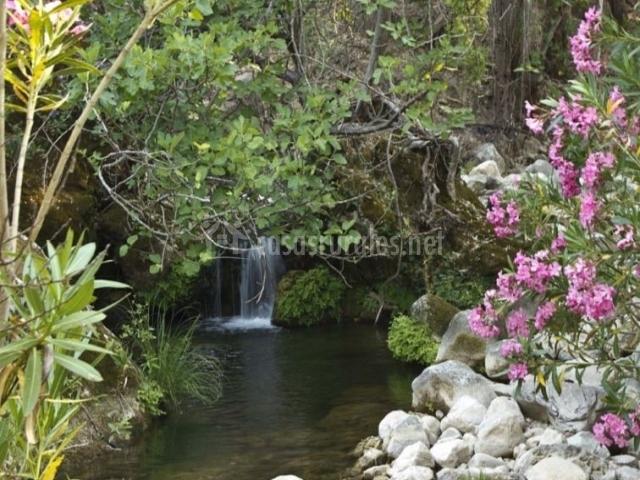 Zona natural del entorno con cascada