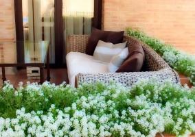 Vistas del porche con plantas y flores blancas