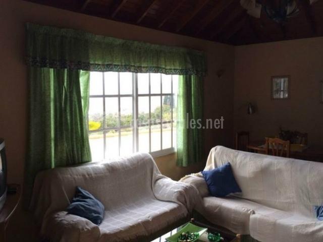 Sala de estar con cristaleras y detalles en verde