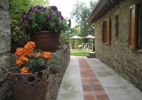 Muchas flores en la decoración y pasillo al jardín