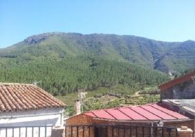 Vistas desde la terraza del alojamiento a la montaña y bosques