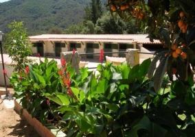 Acceso a las zonas de piscina y naturaleza alrededor
