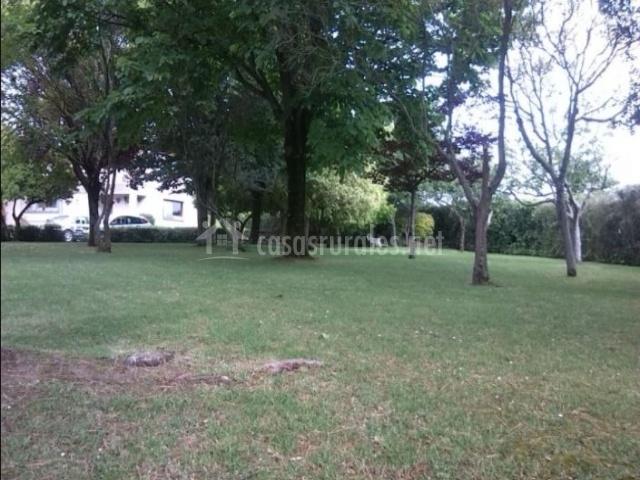 Vistas de las zonas verdes con plantas