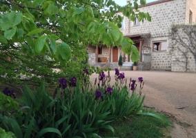 Jardín y flores junto al camino