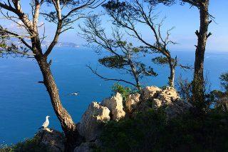 Las playas más bonitas de Alicante