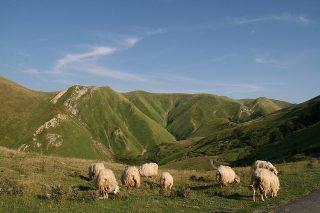 5 rincones naturales en Navarra