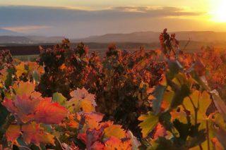 Ruta por los paisajes naturales de La Rioja