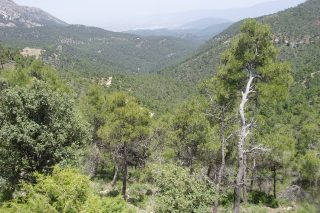 Turismo rural por la Sierra de Espuña
