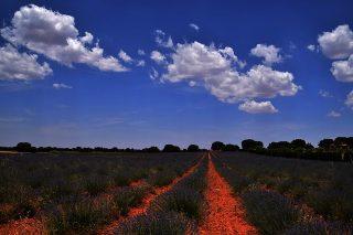Ruta por los espacios naturales de Albacete