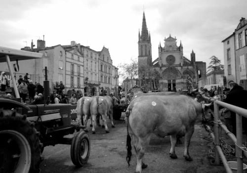 Fiestas en Aquitania