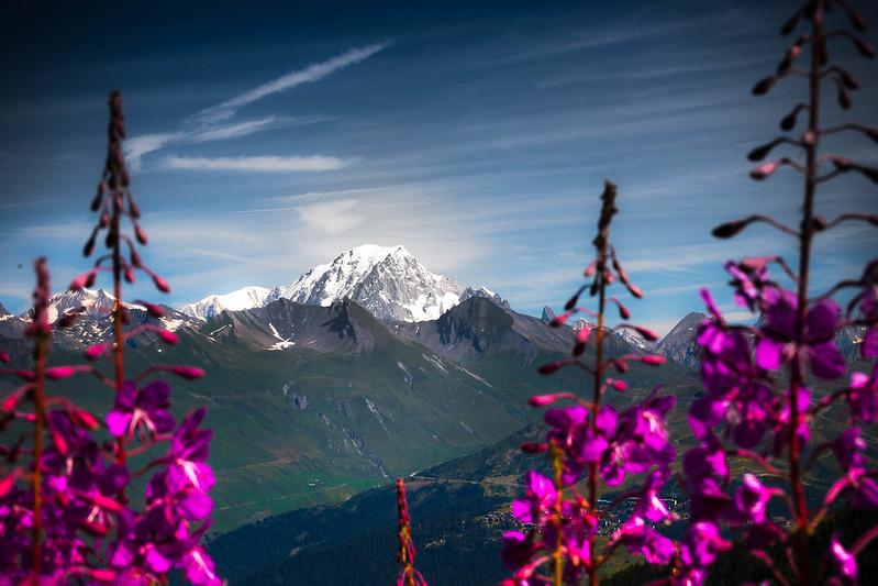Naturaleza en Ródano - Alpes