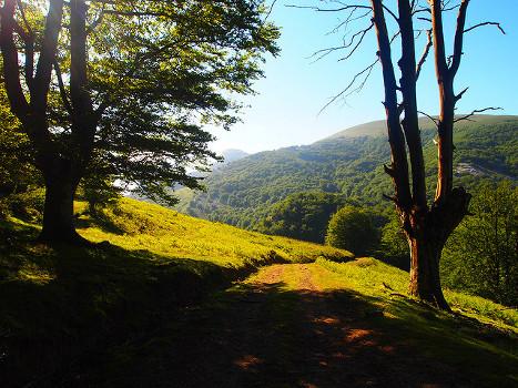 Naturaleza en País Vasco