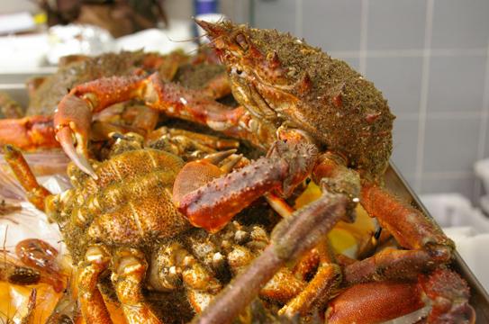 Qué comer en A Coruña