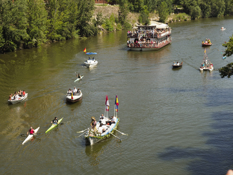 Festivities in Palencia