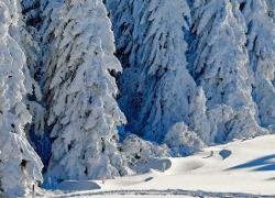 Casas Rurales para la Nieve
